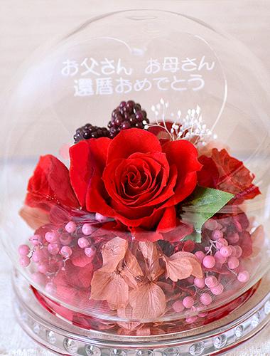 赤色のバラが生えるプリザーブドフラワーROSAシリーズの人気カラー