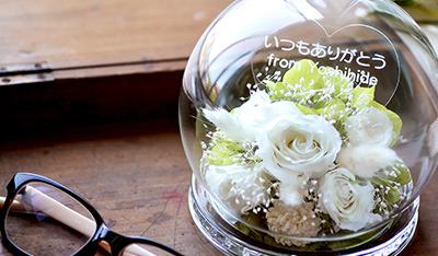 白薔薇が暗闇で綺麗に光る ドーム型プリザーブドフラワー