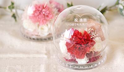 光るバラとカーネーションの新しいドームが登場
