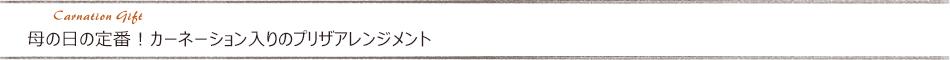 母の日定番!カーネーションと名入れが組み合わさった母の日プリザギフト